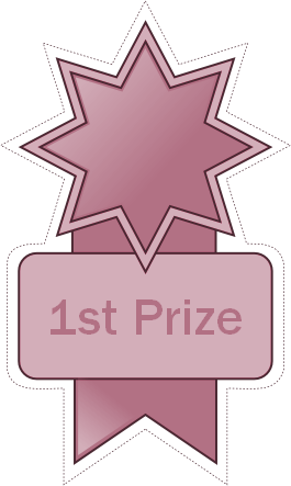 1stPrize icon