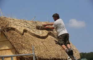 West's Wood Fair - Thatching